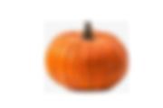 Pumpkins copy.png