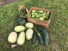 2019 09 E Garden Produce.jpg