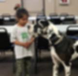 2019 05 A Small Animal Fair.jpg