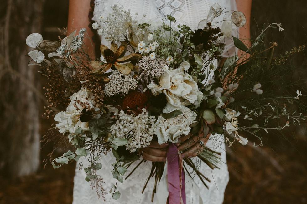 Wilderness Shoot by Dawn Thomson