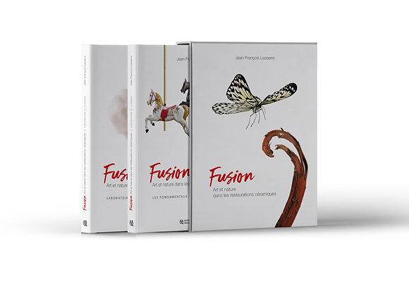 Fusion : L'art et la nature dans les restaurations céramiques