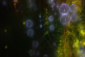 pondlights-12.2.jpg