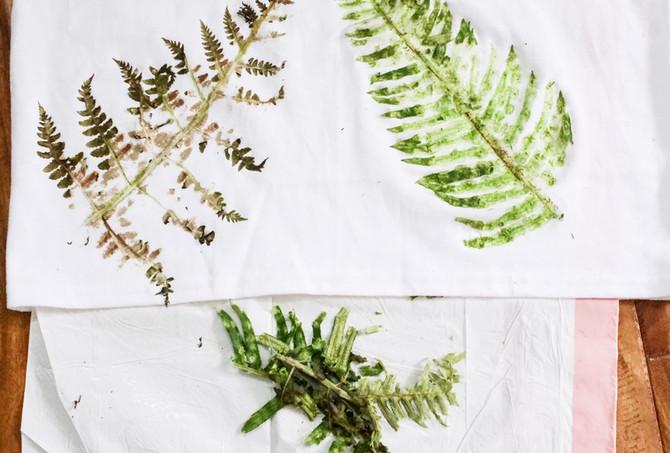 Chlorophyll Leaf Prints