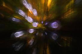 pondlights-19.2.jpg