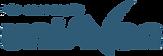 Logo-Pós-UniAvan-Mono-Azul-300px.png