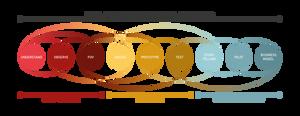 Design thinking & design de service pour créativité et innovation
