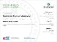 200107 Certificat BabsonX MIS01x.png