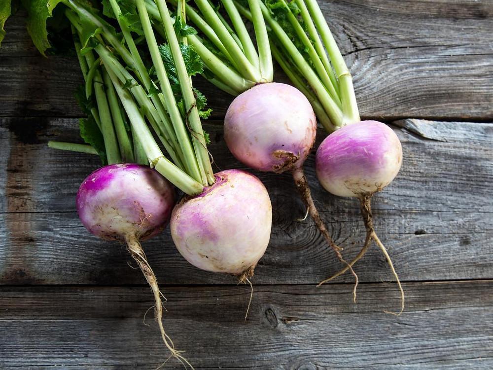 White turnip, march seasonal veggie