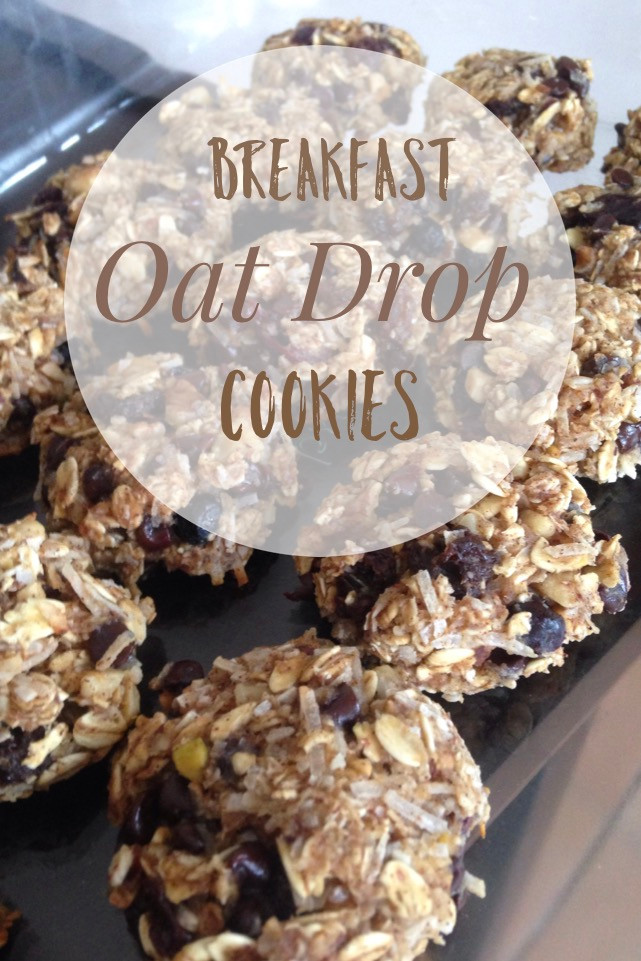 Oat Drop Breakfast Cookies