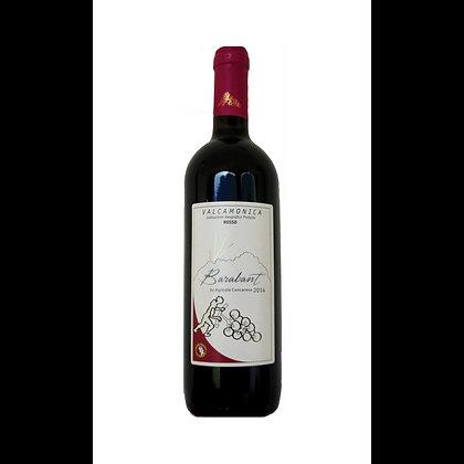 "Valcamonica Rosso IGT ""Barabant"" 2015 - Concarena"