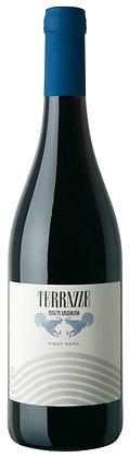Pinot Nero Terrazze 2019 - Tenuta Mazzolino