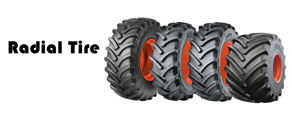 Radial Tire.jpg