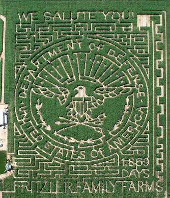 fritzler-corn-maze-design-2010.jpg