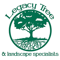 Legacy tree and landscape.png