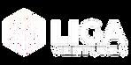 Logo-Liga_Fundo-Claro (1)_edited.png