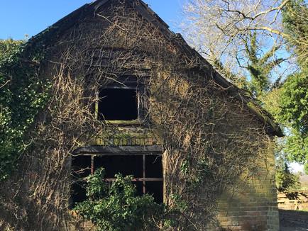 Blog: Owl Box LIVE - Barn owl habitat and nest site selection