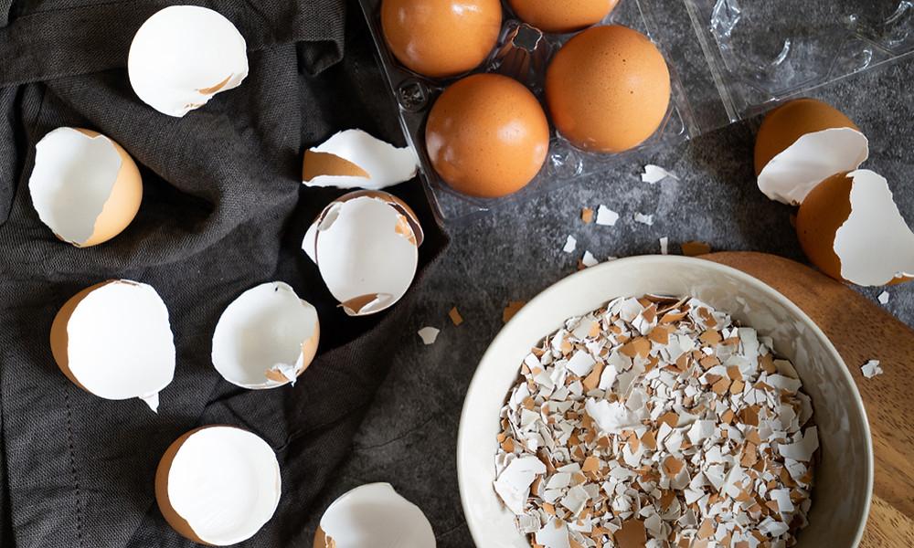 Яичная скорлупа как источник кальция и минералов