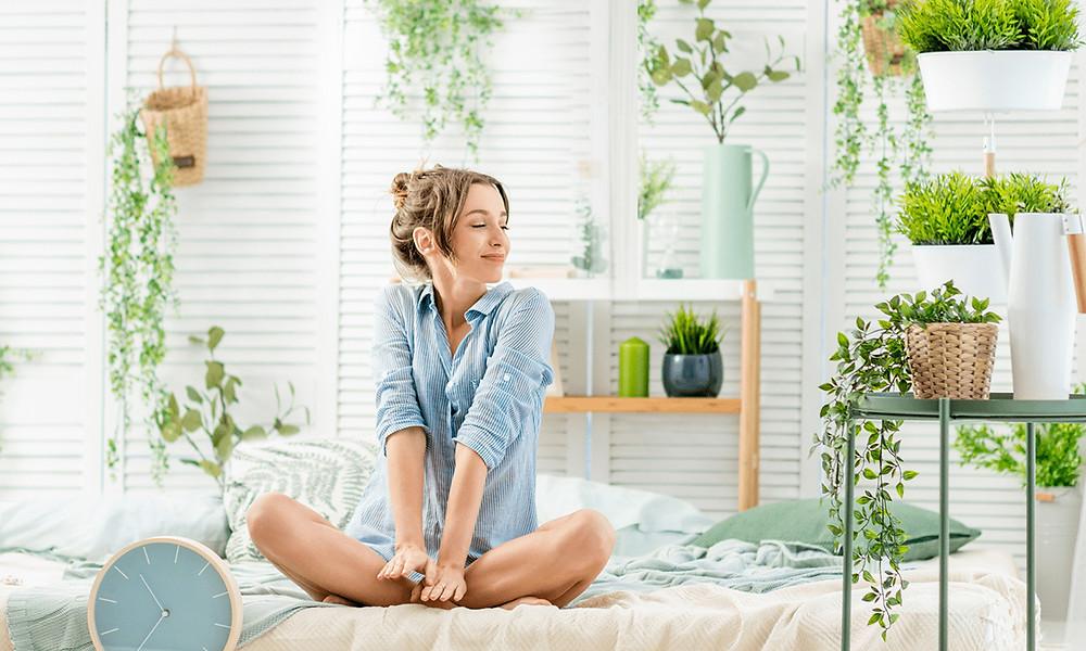 Комнатные растения и их польза для здоровья