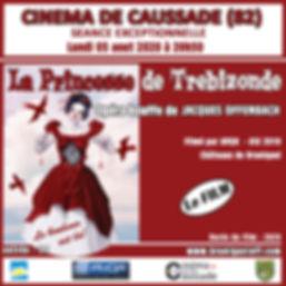 Affiche Film Caussade 2020.jpg