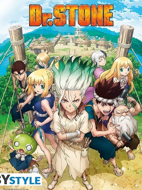 Poster Dr Stone Groupe (52x38cm)