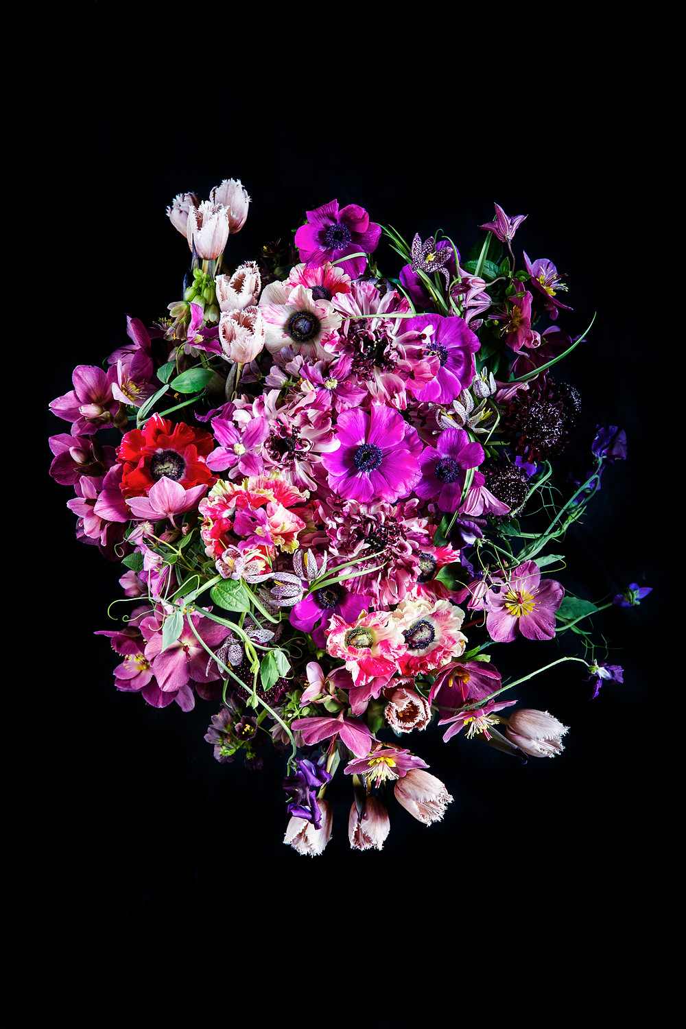 Flower photography using spring florals in jewel tones