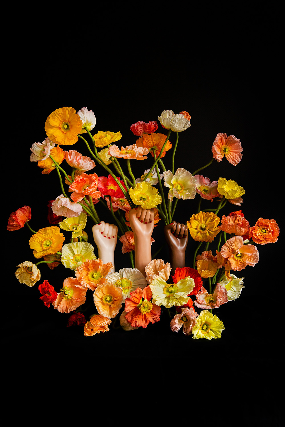 colorful poppies with girlpower vases