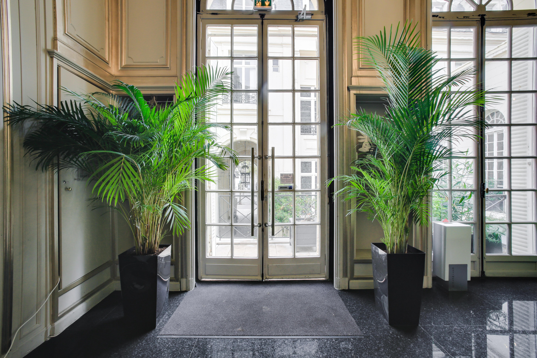 Location de plantes Paris