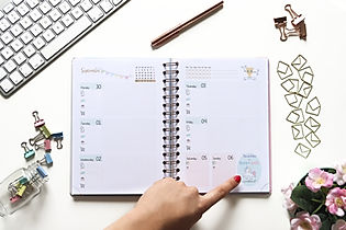 Diary and Planner