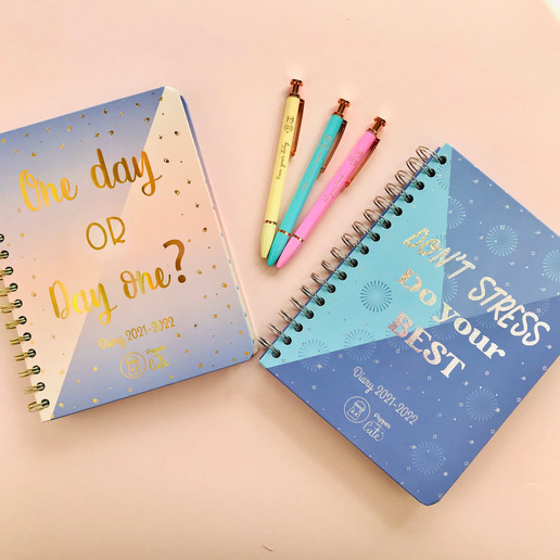 Cute stationery and diaries picture