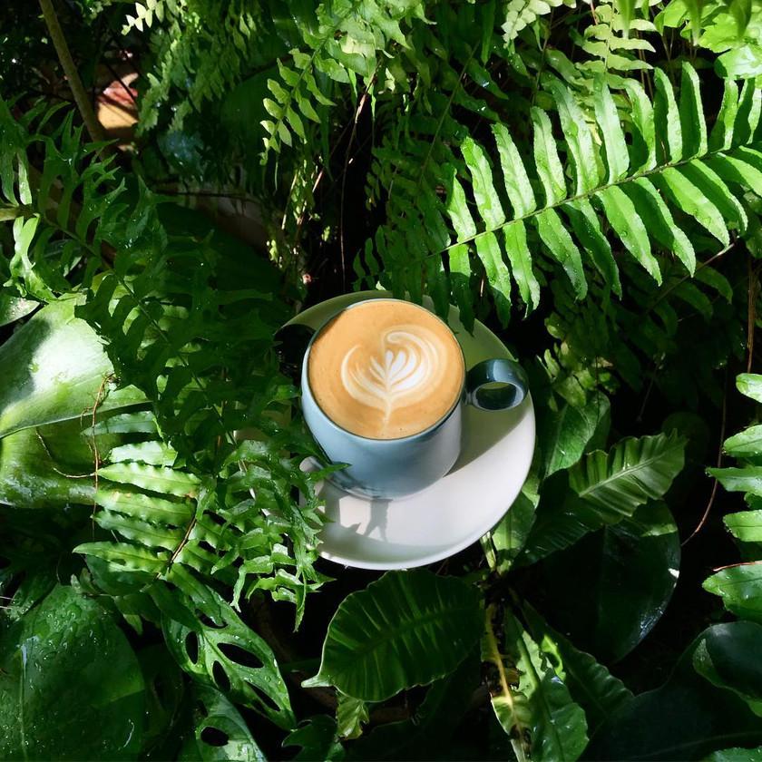 Latte @ Lunabar Cafe