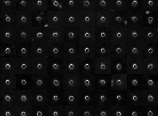 """Live cell histology"" preprint uploaded to biorxiv!"