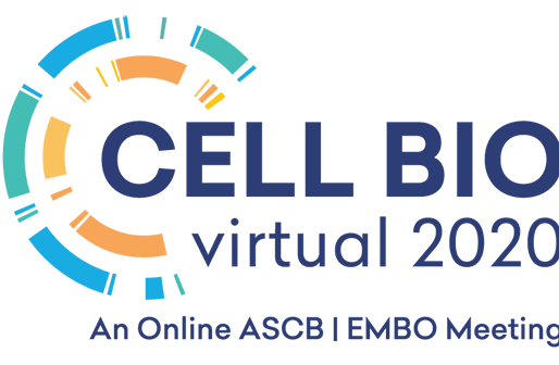Assaf was selected as a ASCB Minisymposia Co-Chair