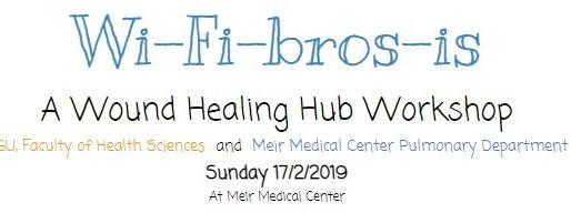 Assaf will talk in a wound healing workshop
