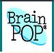 brain.tiff