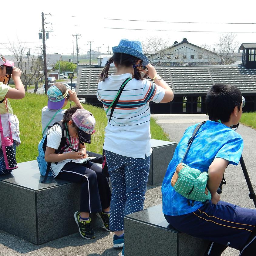 <中止>【親子】海辺の野鳥観察会