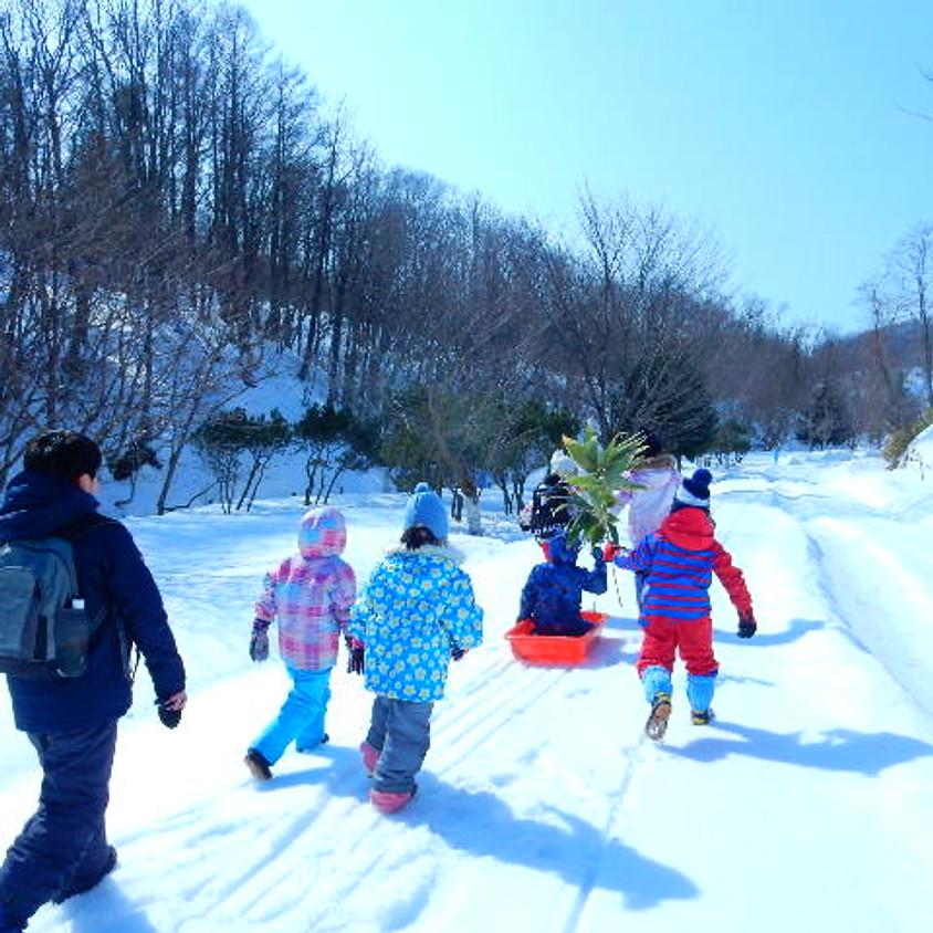 【親子】厚田の森で雪遊び