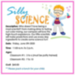 SillyScientist2020-01.jpg