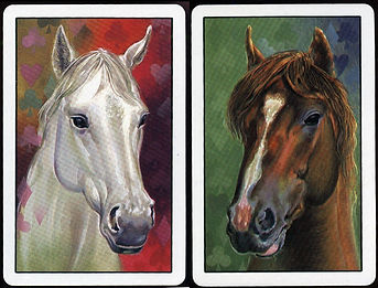 horse_spain.jpg