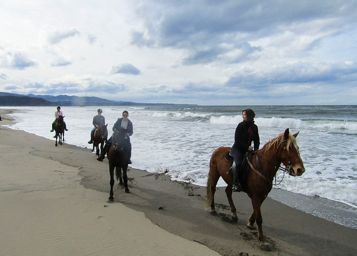 Paseo-a-caballo-playa.jpg