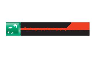 logo BNP foundation.png