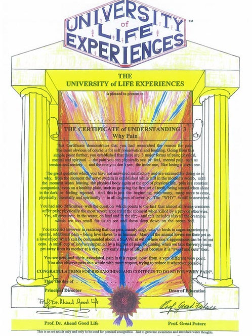 Certificate Of Understanding 3 - Why Pain - University Of Life Experiences