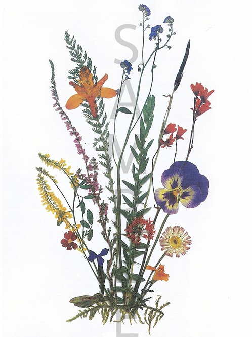 Gertraud Flower Print