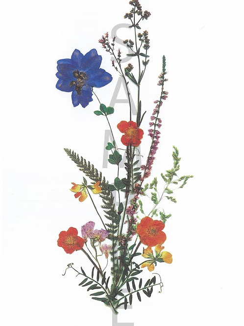 Franziska Flower Print