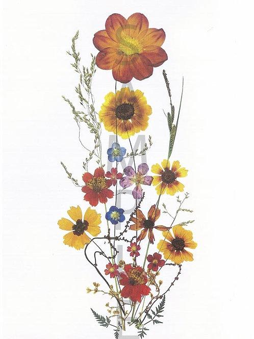 Elisabeth Flower Print