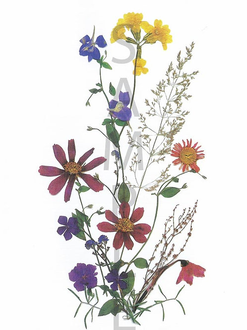 Barbara Flower Print