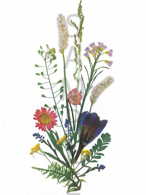 Josephine Flower Print