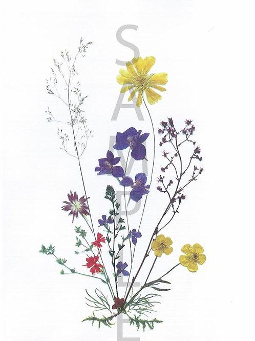 Dorothea Flower Print