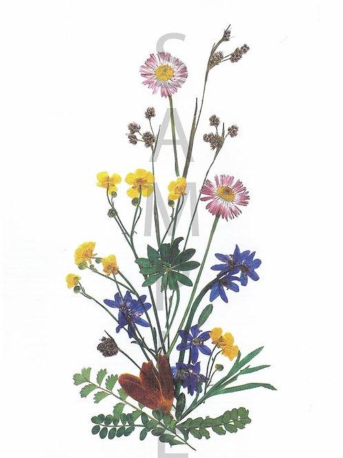 Kristina Flower Print