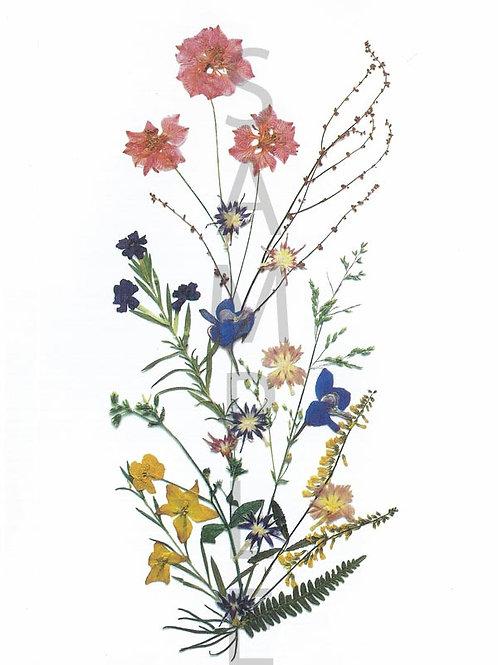 Edeltraud Flower Print