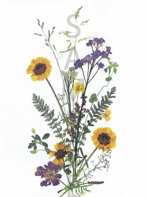 Ingrid Flower Print